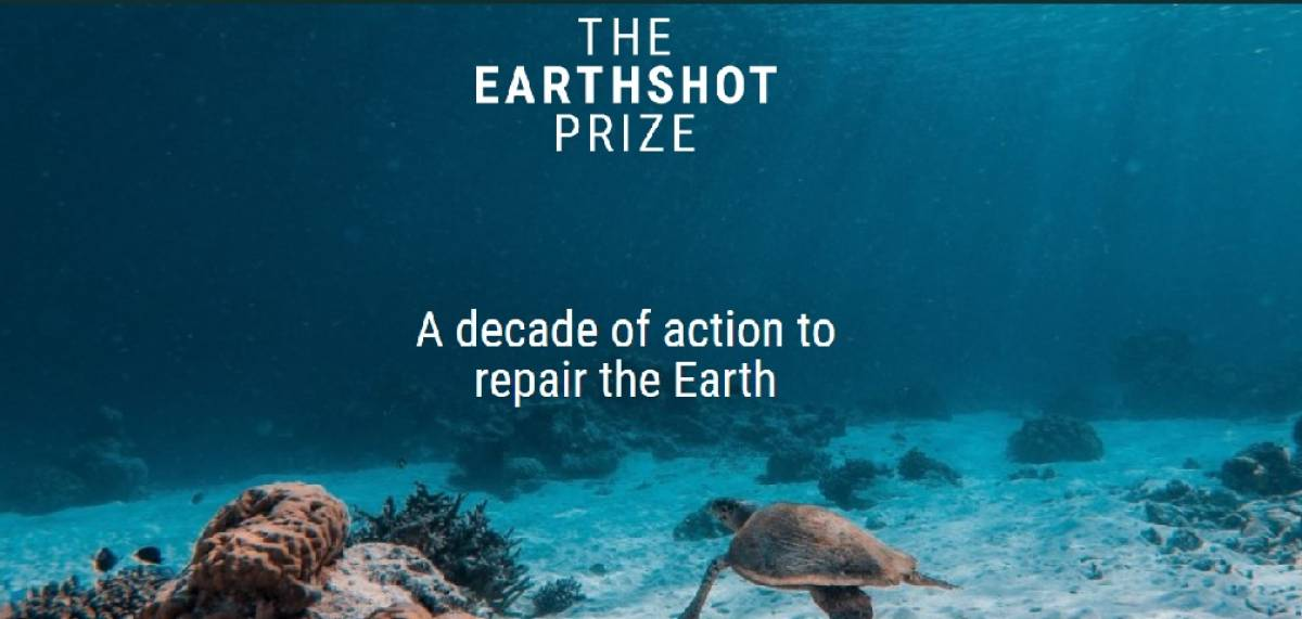 Is the Earthshot prize really necessary?